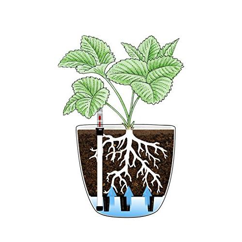 T4U Watering with of 4, Decorative Planter Pot for House Herbs, African Violets,